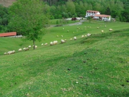 Casas rurales en cantabria posada la charola for Registro de la propiedad lugo